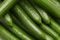 Морози в Іспанії відбилися на цінах на огірки в Німеччині