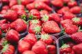 Найбільша європейська мережа супермаркетів відмовляється від несезонної полуниці