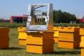 Робот-бджоляр удвічі прискорює збирання меду