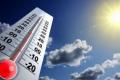 Кількість посушливих років у Житомирському Поліссі зростатиме, – прогноз