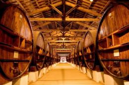Виробництво виноматеріалів зменшилося на 42%