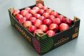 Молдовські яблука почали експортувати під спільним брендом
