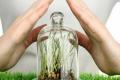 Світовий ринок біопрепаратів для захисту сільгоспкультур зростає швидше за «хімічний»