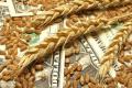 У 2021 році до Держпродспоживслужби надійшла 21 нотифікація з приводу якості зернових