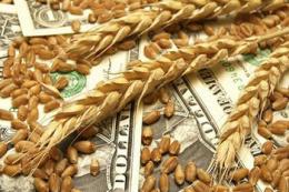 Експорт українського зерна перевищив 13,1 млн тонн зерна