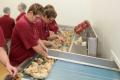 Німеччина заборонить знищення добових курчат-самців