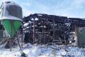 На Чернігівщині у пожежі загинуло близько 230 свиней