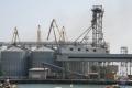 В двох українських портах обмежено операції з зерновими
