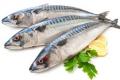 Попит на рибу в 2021 році в 4,3 раза перевищить внутрішню пропозицію, – Мінекономіки