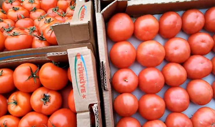 За останніх 5 років імпорт томатів та огірків зріс удвічі