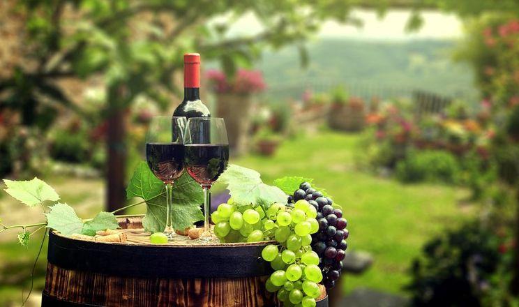 Міністр пообіцяв підтримати виноградарство та виноробство
