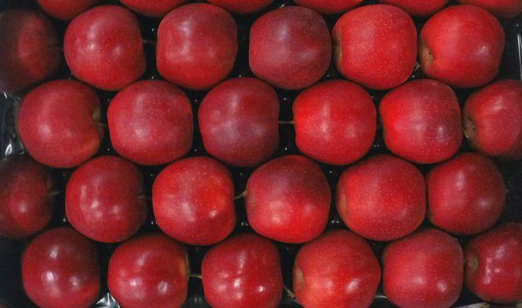 Польські трейдери прогнозують подорожчання яблук