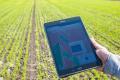 Експерт назвав істотний  недолік багатьох мобільних додатків для агрономів