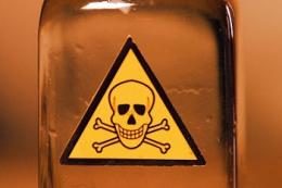 У Німеччині виявили сильне забруднення водойм пестицидами