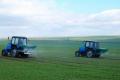 За весняного підживлення озимини на торфових ґрунтах застосовують мідь і марганець