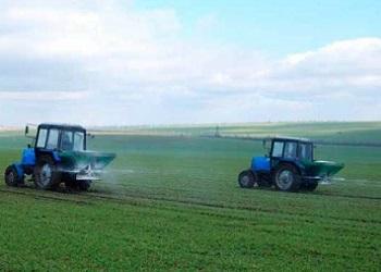 У Ristone Holdings триває підживлення озимої пшениці