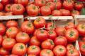 Продажі марокканських томатів до Євросоюзу зросли на 26% за 5 років