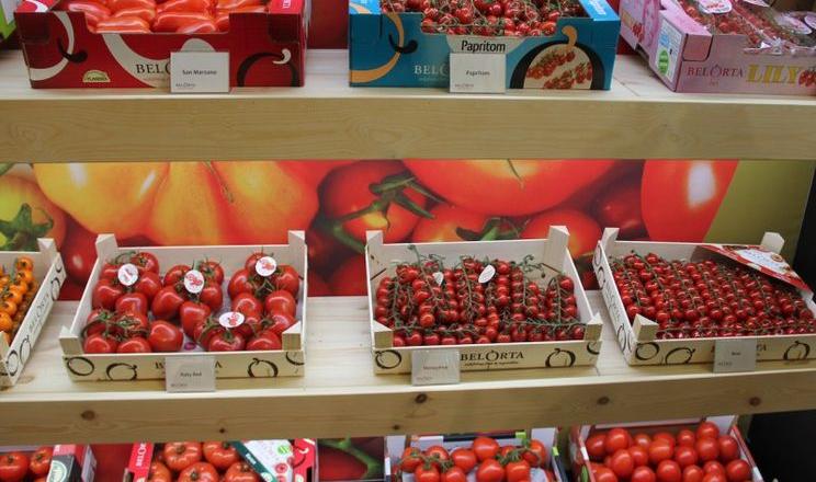 Смак є ключовим для споживачів томатів, – виробник