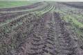 Як уникнути повторного ущільнення ґрунту