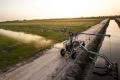 Використання метеоданих у дощуванні економить до 30% води, - дослідження