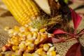 Сільгоспвиробники активно укладають форварди на кукурудзу 2021 року