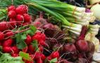 Більшість ранніх овочів подорожчала, попри збільшення пропозиції