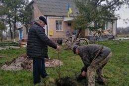 У Чорнорудці посадили новий фруктовий садок на місці старого