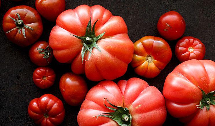 Томати Монтероза визнали найкращим натуральним та органічним продуктом
