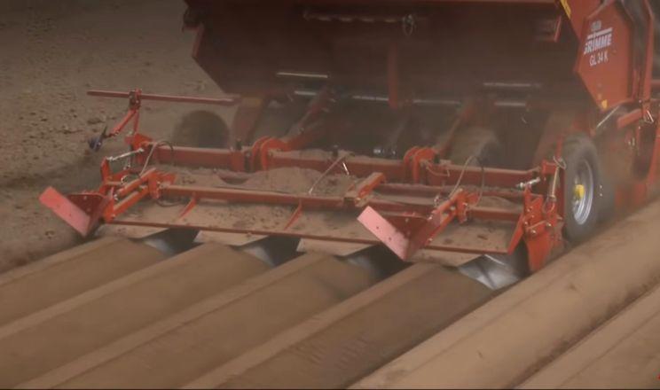 При богарному виробництві картоплю висаджують якомога раніше