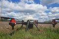У AgriLab Farming внесли гербіцид вибірково, за допомогою дрона XAG