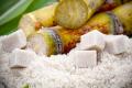 «Астарта» почала переробку цукру-сирцю з тростини