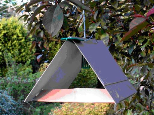 Феромонні пастки допомагають діагностувати масовий літ шкідників