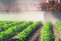 Які біопрепарати захищають від пестицидного навантаження