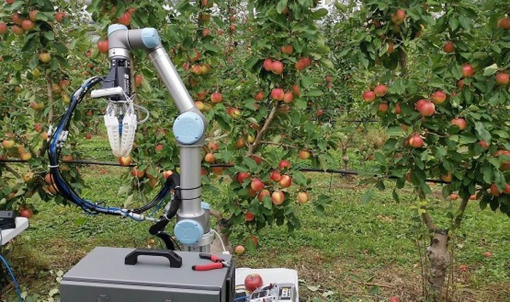 Robot Apple Harvester 3 збирає яблуко за 7 секунд