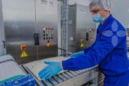 «Терра Фуд» отримала міжнародний сертифікат санітарно-гігієнічної безпеки робочих місць