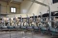 У черкаському господарстві запустили нову доїльну залу
