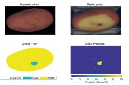 Забої картоплі виявлятимуть мультиспектральною камерою