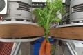 У Франції розробляють овочеві роботизовані ферми