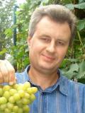 Анатолій Бачинський