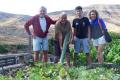 Іспанський фермер виростив огірок довжиною понад метр