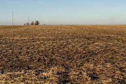 Погода в Україні: мінлива хмарність без опадів