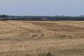 На Полтавщині горіло пшеничне поле площею 25 га