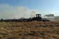 На Київщині згоріли майже 10 га посівів ярого ячменю