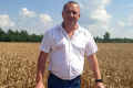 Rostok Holding почав збирання озимої пшениці з урожайністю 5 т/га