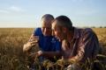 Corteva Agriscience допомагає фермерам застрахуватися від наслідків негоди