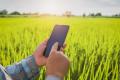 МінАПК отримає 27 млн грн на створення Аграрного реєстру