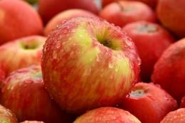 Україна може експортувати рекордний обсяг яблук