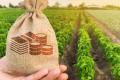 Обсяг аграрного кредитного боргу в Україні у 20 разів менший, ніж в США