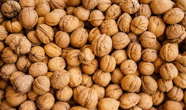 Волоські горіхи знижують рівень холестерину, – вчені