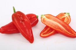 Почали комерційне вирощування перців без насіння